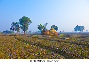 straw hut of local people in India, Rajasthan in early...