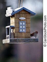 Welcome Birdfeeder - Cute bird on bird feeder that has...