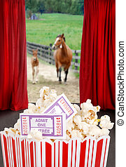 Popcorn and tickets at the movies