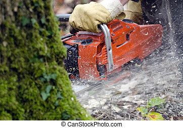 chainsaw - a chainsaw in action