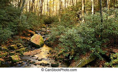 Beautiful creek in autumn foliage