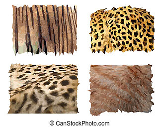 feline animals fur patterns - four different kind of feline...