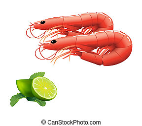 Shrimps - Fresh shrimps served with lime and mint isolated...