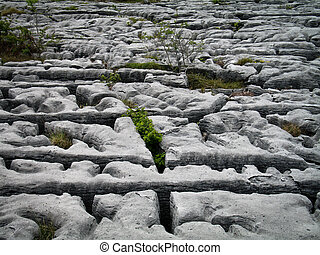 Burren way in Ireland