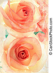 Vintage roses - soft Vintage Style. Two beautiful pink...