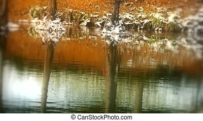 Forest reflection in water,ripple,snow.