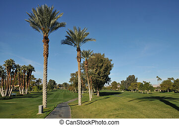 Golf fairway with cart path and palm trees