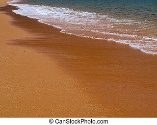 inviting golden sand beach on a sunny day without people