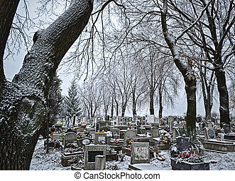 Cemetery in winter-time: frost-covered trees, tombstones,...