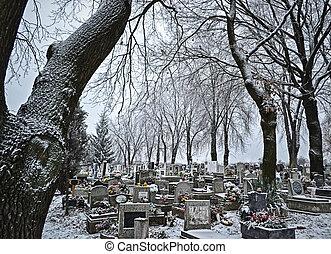 cementerio, invierno