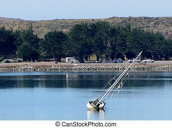 Sinking Boat - Photo taken of sinking boat in Bodega Bay,...