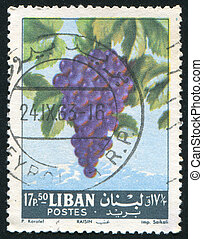 Grapes - LEBANON CIRCA 1962: stamp printed by Lebanon, shows...