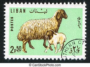 Ewe and lamb - LEBANON CIRCA 1965: stamp printed by Lebanon,...