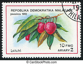 Litchis - MALAGASY CIRCA 1992: stamp printed by Malagasy,...