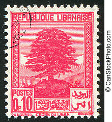 Cedar of Lebanon - LEBANON - CIRCA 1925: stamp printed by...