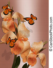 Butterflies and lilies - Image and illustration composition...