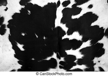 Black Cowhide - Cowhide for use as a background in full...