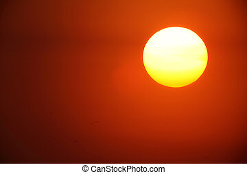 large sun - Sunset with a large sun