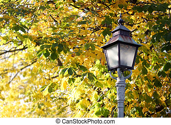 Autumn Lamp Post - Lamp post with autumn colors in...