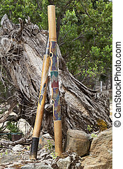 Two Didgeridoos, Indigenous Australian Instruments - Two...
