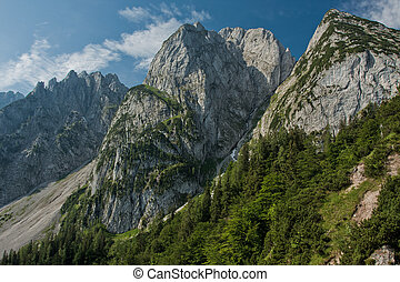Donnerkogel Gosaukamm Mountains in Austria with green trees