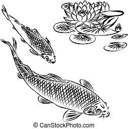 Two Carp and Water Lily . - Two Carp and Water Lily ,...