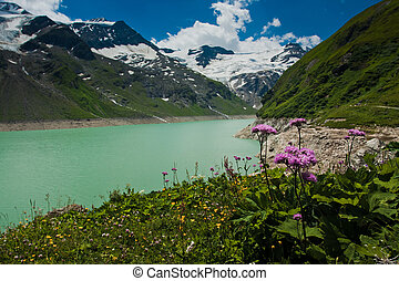 Kaprun area, lake, flowers and Alps in Austria