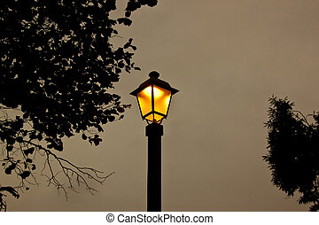 Lamp post at night