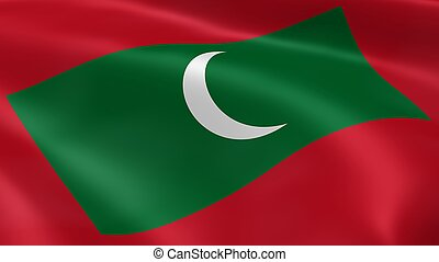Maldivian flag in the wind