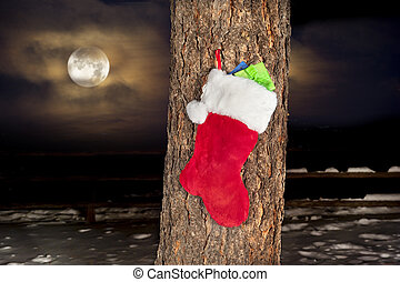 Christmas stocking on pine tree - A Christmas stocking...