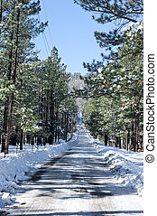 Snow covered road - A snowy ice covered road heads upward...