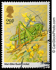 Insect Postage Stamp