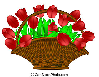 Basket of Red Tulips Flowers Illustration