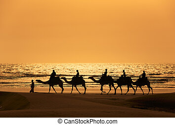 A silhoutte of a dromedary and Tourists - Tourists ride...