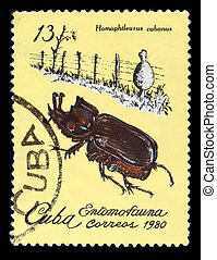 Postage Stamp - CUBA - CIRCA 1980: A Stamp printed in Cuba...
