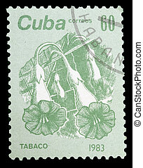 Postage Stamp - CUBA - CIRCA 1983: A stamp printed in CUBA...