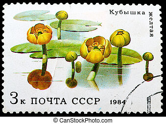 Postage Stamp - USSR - CIRCA 1984: stamp from the USSR shows...