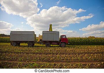 maíz, Cosecha, helicóptero, expulsión,...