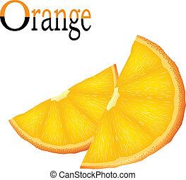 Vector slices of orange