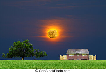 A large oak tree in a grass field in a park used as a shade tree for picnic tables along with a public restroom on a gorgeous summer day with a gorgeous glowing sunsetting moon in the sky behind with