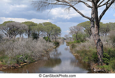 confluence of Ombrone river in Tuscany, National Park...