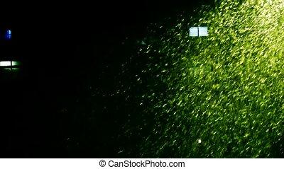 Snow drift under lamp,window,particle Art.