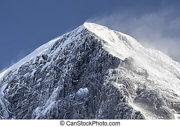 Eiger Summit - The summit of the Eiger as seen from Kleine...
