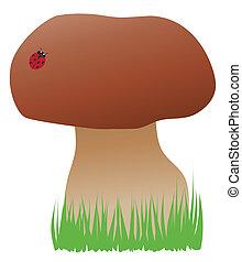 Mushroom - Vector illustration of a mushroom with ladybug