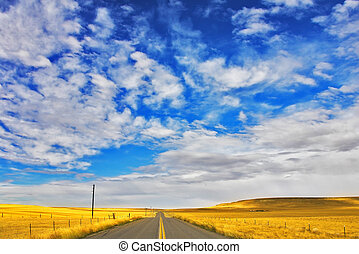 The American prairie in September. A yellow grass and the...