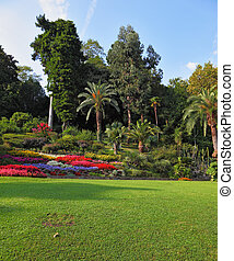The flowerbeds in the park