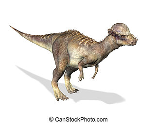Photorealistic 3 D rendering of a Pachycephalosaurus. On...