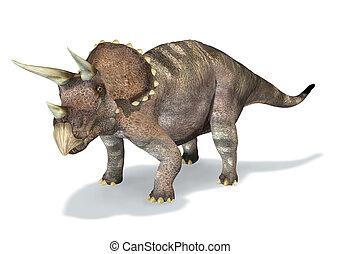 Photorealistic, 3, D, interpretación, Triceratops