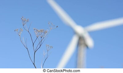 Blurry wind generator on background and flores closeup.