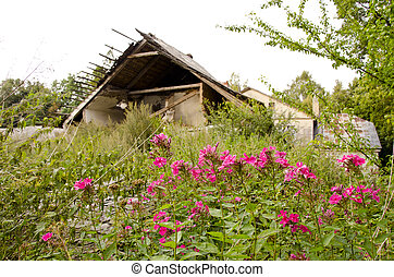 Abandoned village. Crumbling house garden residue -...